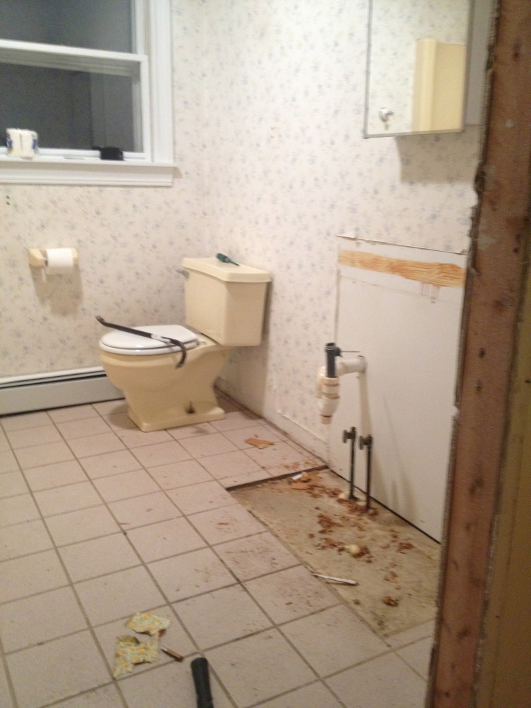 day_one_bathroom_demo